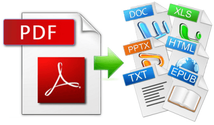 PDF Data Entry Services